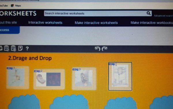 Live work sheet workshop (1) (1)